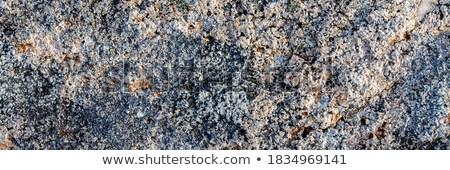 Granite with lichen stains - stone background Stock photo © pzaxe