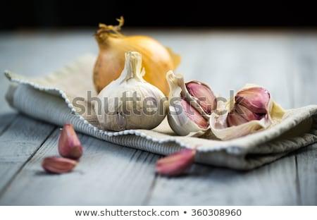 Cebola alho dente de alho prato cozinha Foto stock © stevanovicigor