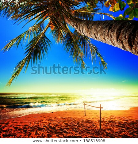 Tropical beach and stormy sky. Square composition. Stock photo © moses