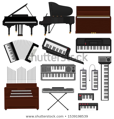 organs vector illustration stock photo © slobelix