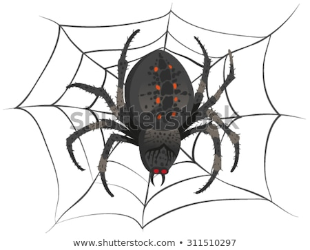 black big scary spider sitting center of web poison spider stock photo © orensila