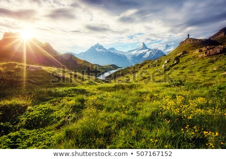 sunny morning in the mountains stock photo © kotenko