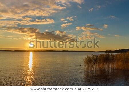 Wolken eend meer foto ontario water Stockfoto © rmbarricarte