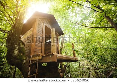 Casa árboles naturales árbol construcción modelo Foto stock © -Baks-