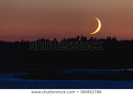 Detrás forestales paisaje cielo luz Foto stock © Juhku
