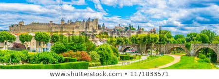 cite de carcassonne languedoc france stock photo © xantana