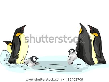 Emperor Penguin Family Ice Sheet Stock photo © lenm