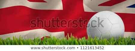 Branco couro futebol grama grama verde Foto stock © wavebreak_media