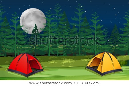 Dwa lesie ilustracja drzewo charakter Zdjęcia stock © bluering