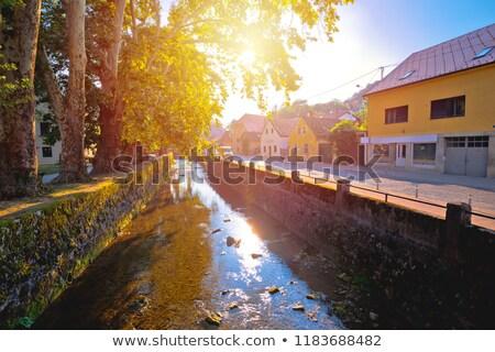 Város folyó park nap pára kilátás Stock fotó © xbrchx