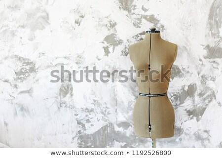 Próbababa szürke fal szoba copy space divat Stock fotó © dashapetrenko