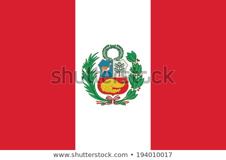 Peru flag, vector illustration Stock photo © butenkow