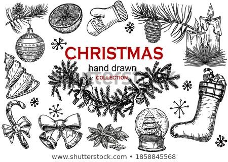 vector sweet christmas fir wreath stock photo © dashadima