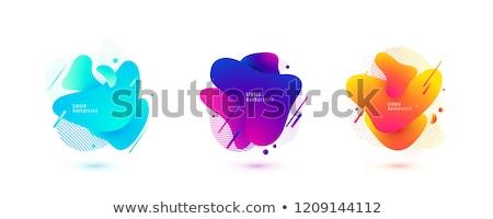 Gradiens folyadék vektor dinamikus elrendezés modern Stock fotó © pikepicture