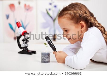 Foto stock: Crianças · estudantes · planta · biologia · classe · educação