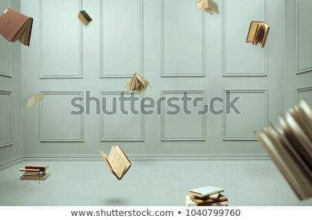 Libri battenti stanza colorato set blu Foto d'archivio © make