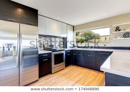 Nowoczesne urządzenia nowego kuchnia apartamentu zestaw Zdjęcia stock © AndreyPopov