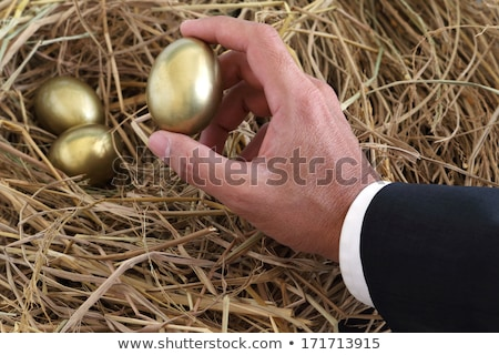 Man's Hand Putting Golden Egg Into Nest Stock photo © AndreyPopov