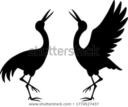 Zwarte kraan zomer dierentuin vogel park Stockfoto © borisb17