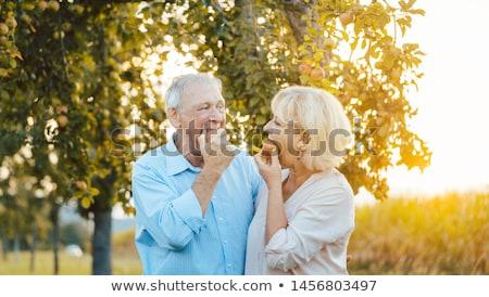 senior woman and man enjoying an apple in late summer sunset stock photo © kzenon