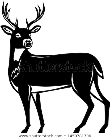 Whitetail Deer Side View Woodcut Stock photo © patrimonio