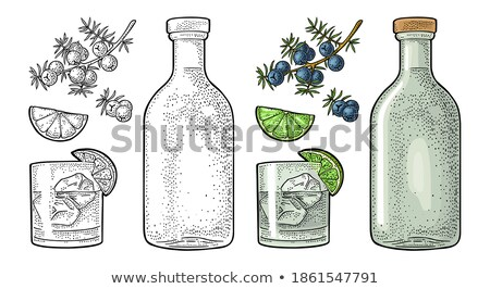 Gin Cocktail Bottle Glass and Ice Vintage Woodcut Stock photo © Krisdog
