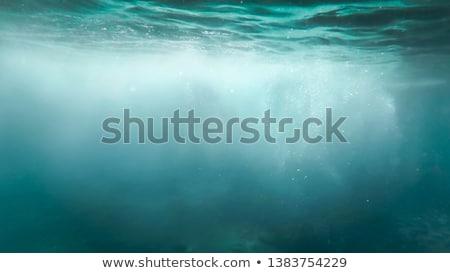 Areia branca praia mar água blue sky lata Foto stock © vapi
