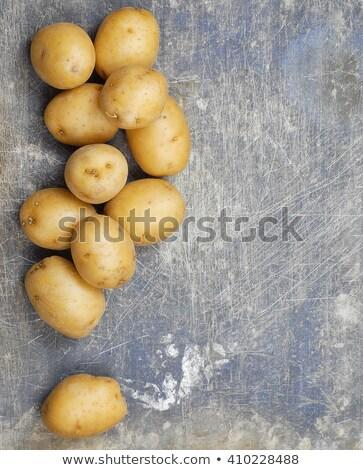 Yukon Gold Potatoes Vertical Stock photo © bobkeenan