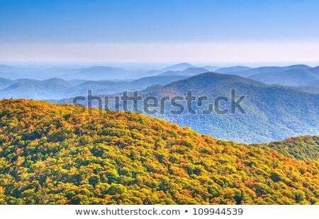 Widok z góry Gruzja USA krajobraz latać krajobrazy Zdjęcia stock © phbcz