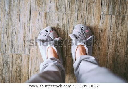 Férfi házi cipők izolált fehér sekély tél Stock fotó © broker
