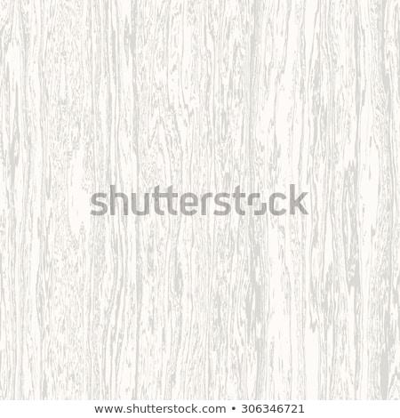 Pattern wood texture tracery Stock photo © IMaster