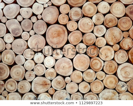 Woodpile background Stock photo © silent47