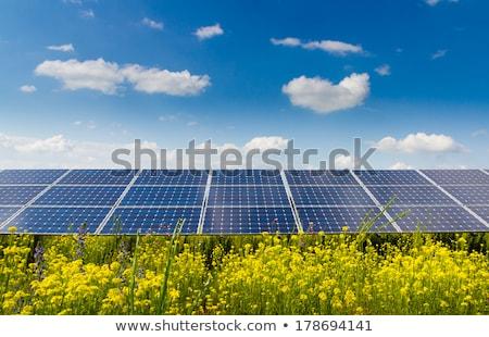 solar cell on the flower field Stock photo © dagadu