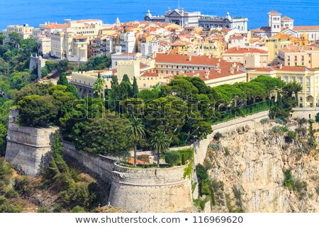 Medieval fortification and view of Monte Carlo. Stock photo © rglinsky77