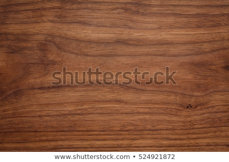 walnut on wood stock photo © m-studio