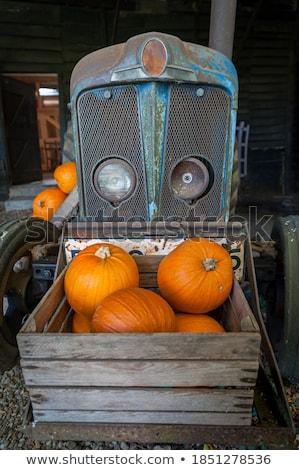 pumpkins next to an old farm tractor Stock photo © alex_grichenko