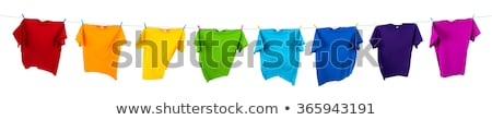 Green t shirt hanging on rope to dry Stock photo © stevanovicigor