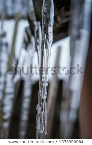 Close Up Of Icicles Hanging From Roof Stock photo © monkey_business