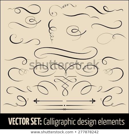 Vettore classica stile calligrafia elementi design Foto d'archivio © tiKkraf69
