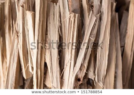 eski · yakacak · odun · ağaç · orman · arka · plan - stok fotoğraf © olandsfokus