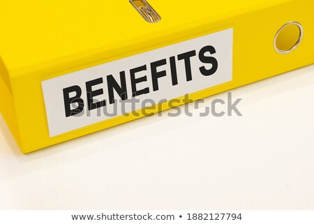 Revenues Concept with Word on Folder. Stock photo © tashatuvango