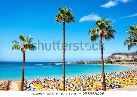 Sunbather on Amadores Beach in Gran Canaria Stock photo © spanishalex