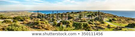 キプロス パノラマ 旧市街 市 太陽 夏 ストックフォト © Kirill_M