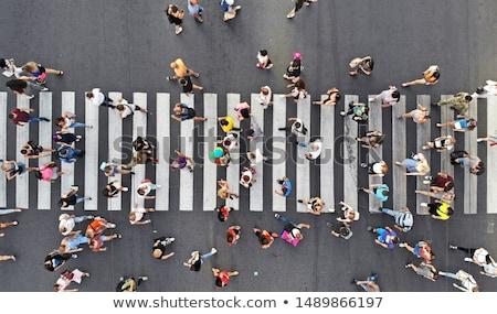 nő · sétál · gyalogos · zebra · utca · női - stock fotó © fisher