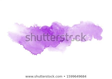 rosa · vettore · acquerello · elemento · bella · acqua - foto d'archivio © gladiolus