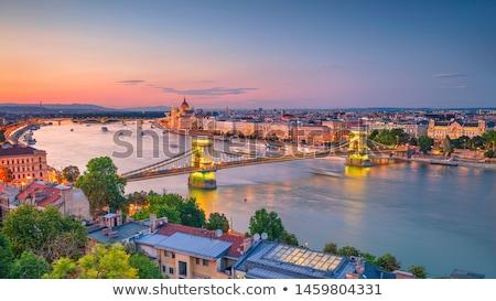 Danubio fiume Ungheria estate cielo albero Foto d'archivio © Fesus