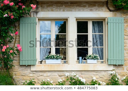 французский окна жалюзи Windows свет оборудование Сток-фото © ivonnewierink