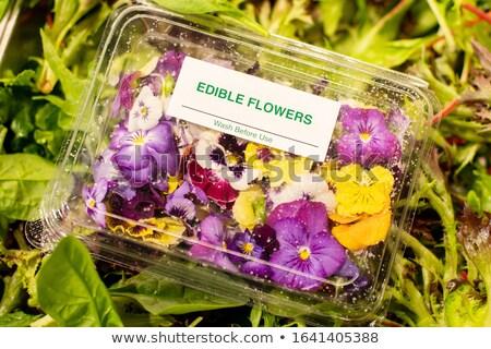 egyezség · orchideák · nagy · virágmintás · fonott · kosár - stock fotó © simply
