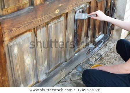 fából · készült · ajtó · gyönyörű · bejárat · ház · udvar - stock fotó © simply