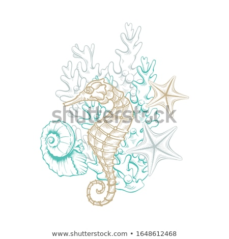 green seahorse line art illustration stock photo © cidepix